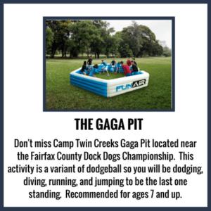 CF18-Gaga-Pit-300×300